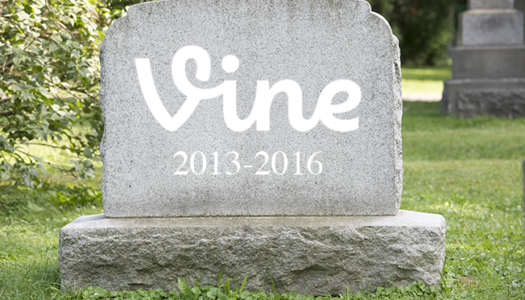 End of the loop for Vine.